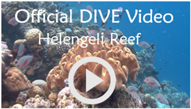 Helengeli Official Dive Video
